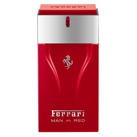 Man In Red - Eau de toilette (Edt) Spray