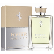100 ml - Noble Fig