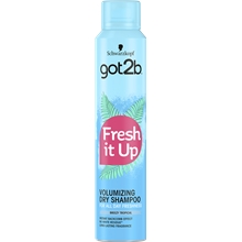 Got2B Fresh It Up Volume Dry Shampoo