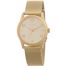 Gold Plated Mesh Watch