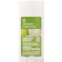 deostick-spring-fresh-70-ml