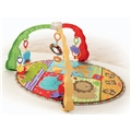Fisher Price Musical Mirror Activity Gym