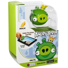 apptivity-game-angry-birds-y2826