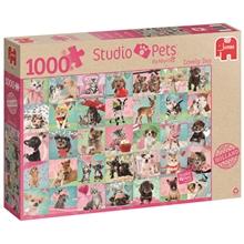 palapeli-studio-pets-lovely-day-1000-palaa