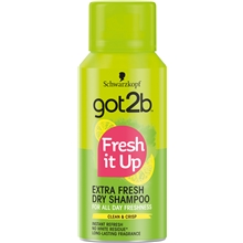 Got2B Mini Fresh It Up Dry Shampoo