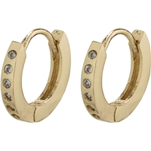 26203-2043 Gry Earrings 1 set