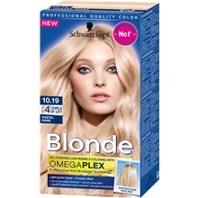 1 set - 10.19 Frosted Pastel - Schwarzkopf Blonde