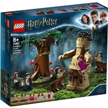 75966 LEGO Harry Potter Kielletty metsä