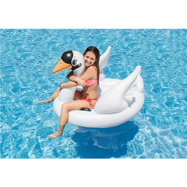INTEX Swan Ride-On (Kuva 3 tuotteesta 3)