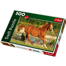 Palapeli 500 Palaa Beauty of gallop